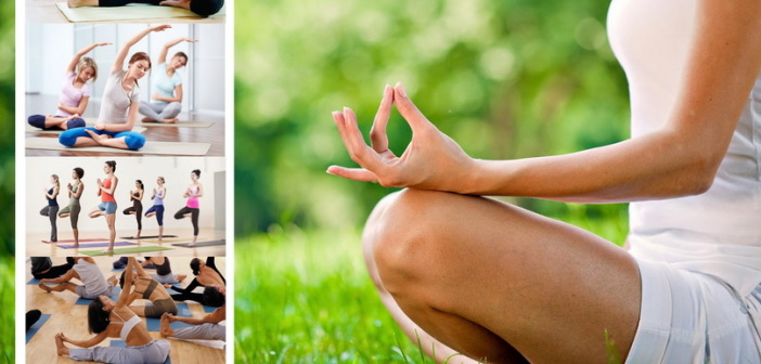 Warsztaty Yoga