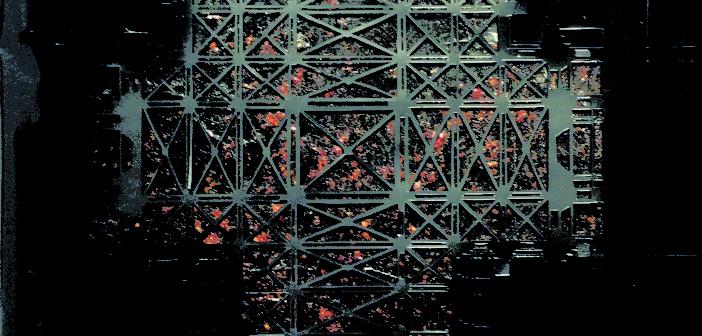 Bartosz Radziszewski – SEARCH/LIGHT – wystawa 81.