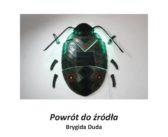 Wernisaż wystawy prac Brygidy Dudy