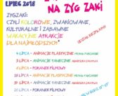 Zyg-Zaki